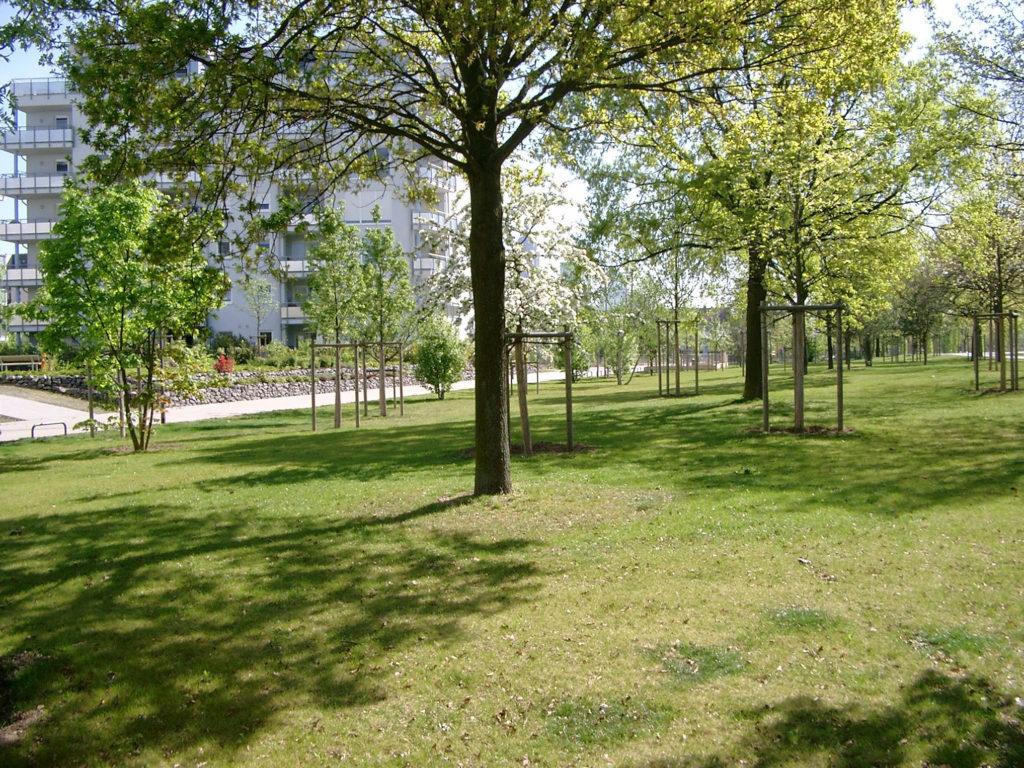 Nördlicher Parkbereich