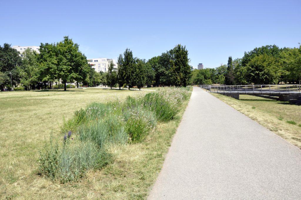 Mittlerer Parkbereich