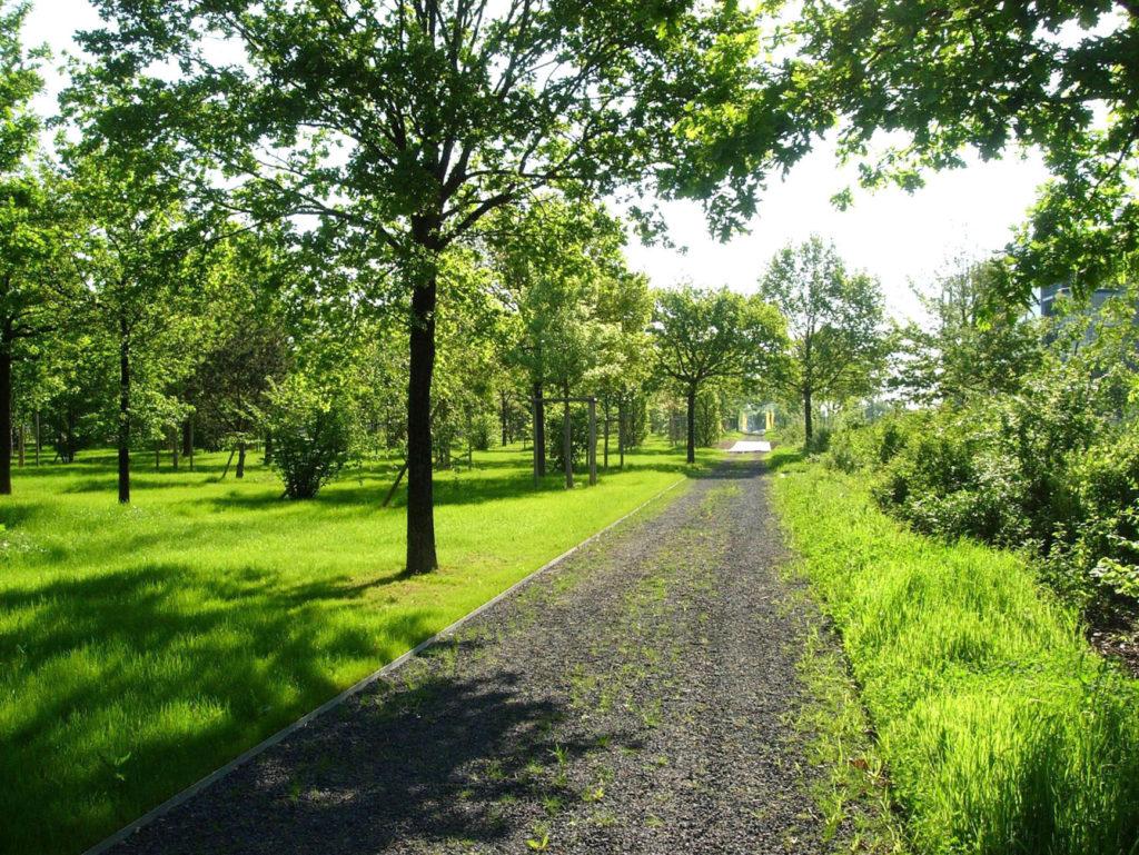 Südlicher Parkbereich